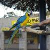 長崎のバイオパークが意外と楽しい動物園な件