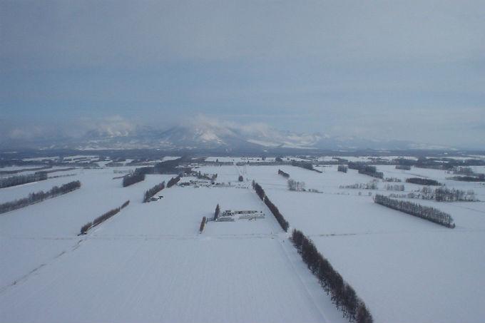 北海道 熱気球 フリーフライト